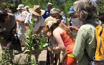 Forty volunteers trained last weekend to become citizen scientists for monarch butterflies.  Credit: Deborah C. Smith.