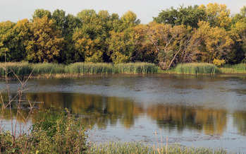 A new poll finds the latest protections of the Clean Water Act are supported by a majority of anglers and hunters in Minnesota. Credit: U.S. Fish and Wildlife Service Midwest/Flickr.