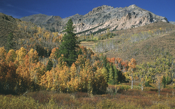 The U.S. Senate approved the Boulder-White Clouds wilderness bill (H.R. 1138/S. 583) on Tuesday. Credit: U.S. Forest Service.