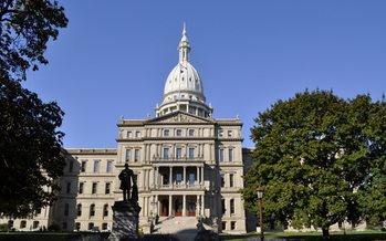 Foster parents will be at the Michigan State Capitol today to share their experiences, and offer suggestions for improving the child welfare system with lawmakers. Credit: Rodney Campbell/Morguefile.