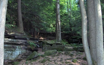 The Land and Conservation Fund helps protect the Cuyahoga Valley National Park. Credit: Taximes/Wikimedia
