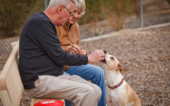 Pets are proven to improve their owner's health. Credit: Arizona Humane Society