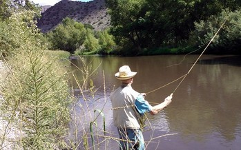 Conservationists are working to block a plan to divert water from the Gila River in New Mexico.<br />Credit: Allyson Siwik, Gila Conservation Coalition