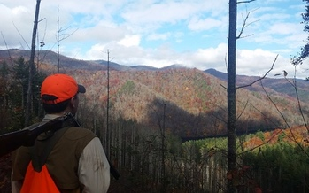 A ruffed grouse hunter is pictured on Cold Mountain Game Lands in Haywood County. Credit: John Culclasure