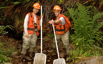 Fisheries biologists are just some of the positions to be filled by the U.S. Forest Service in Oregon and Washington. Courtesy: USFS Pacific Northwest Region