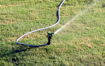 The Don't Be A Drip campaign says excessive lawn watering is just one reason it lists Arizona as the country's biggest Water Hog. (Alvimann/morguefile)
