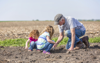 Conservation-minded farmers will be testing new software this month to help weigh the benefits of switching to cover crops. (iStockphoto)