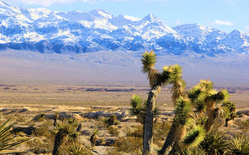 A new poll shows Nevadan are extremely concerned about drought, and place great value on federal public land such as the Tule Springs Fossil Beds National Monument. (Alan O'Neill/Outside Las Vegas Foundation)