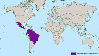 The Zika virus is prevalent in the areas seen in purple, mostly in the Caribbean basin, Central and South America, and southern Mexico. (CDC)