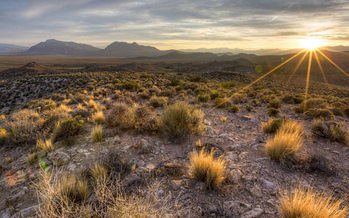 Nevada's Basin and Range National Monument was created last year by President Obama under the Antiquities Act. (Bureau of Land Management)