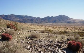 President Obama announced the creation of a new Mojave Trails National Monument today, along with two others: Sand to Snow and Castle Mountains. (bryn_jones)
