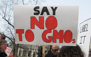 Advocates say 90 percent of Americans want mandatory GMO labeling. (Alexis Baden-Mayer/flickr.com)