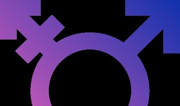 Tennessee lawmakers are considering a bill that would mandate that school systems require students to utilize facilities associated with the gender on their birth certificate. (Paradox/Wikimedia Commons)