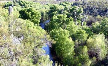 A group of environmental organizations is planning to sue the U.S. Corps of Engineers over a permit for a major development near the San Pedro River watershed in southeastern Arizona. (Charlie Schultz/Sierra Club)