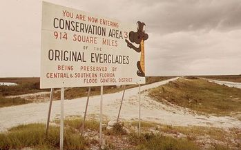 Dedicated funding for Everglades restoration projects has been 16 years in the making. (Fred Ward/Wikimedia Commons)