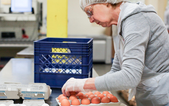 Since 2001, Fresh Alliance has redirected 80 million pounds of food from being wasted in Oregon. (Oregon Food Bank)