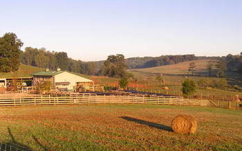Ridgefield Farm in Clay County, home of Brasstown Beef, is under an agricultural easement with the Mainspring Conservation Trust. (Mainspring)