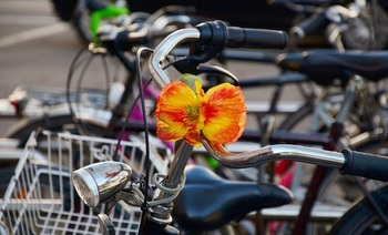 There are 13 Bike Friendly communities in Ohio. (Pixabay)