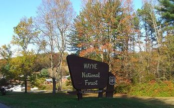 Wayne National Forest is among the nearly 6 million acres of national public lands in Ohio. (Nick Juhasz/Wikipedia)