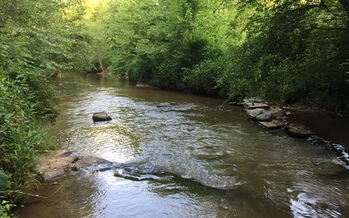 Farmland in western North Carolina is benefiting from state and federal funds for stream water management in a project organized by the Resource Institute. (Harris)