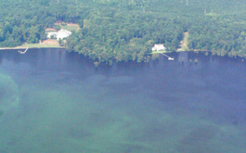 The green swirls of water seen here in the Chowan River are an example of the impact of too much nutrients that can occur in North Carolina waters. (Heather Deck, Pamlico-Tar River Foundation)