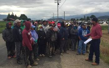 Familias Unidas por la Justicia has staged six walkouts in the last three years on Sakuma Brothers' Berry Farm. (Community to Community)