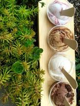 The Hop ice cream shop in Asheville makes hundreds of flavors, many of them with vegan ingredients so more people can experience their products. (The Hop)