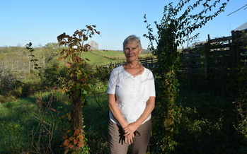 Jane Herrod is one of the Kentucky farmers growing a test plot of industrial hemp this summer. (Catherine Moore)