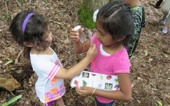 Children in Macon County are learning through outdoor education in the Kids in Nature program by the Highland-Cashiers Land Trust. (HCLT)