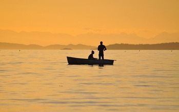 Hunter and angler groups are urging candidates to protect publicly owned lands. (Pixabay)