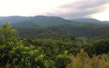 The Cherokee National Forest with 85,000 acres in Carter County is protected as public land. (John Iwanski/Flickr)