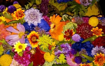 An inner-city Milwaukee girl's dreams of growing and selling flowers came true with the help of a beginning farmer program. (Lovelight Flowers)
