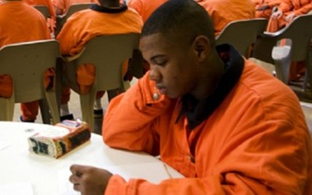 Work continues in Illinois to keep young offenders out of adult court. (peoriacountyjic.org)