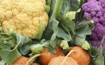 Eating a colorful variety of veggies is heart-healthy and may help prevent heart disease. (UW Extension)