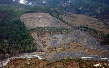 The Oso landslide in 2014 killed 43 people in northwest Washington. (Jonathan Godt/USGS)