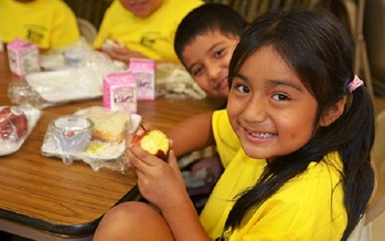 One in five children in Illinois is food insecure. (usda)