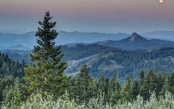 About 42,000 acres of the Cascade-Siskiyou National Monument expansion are in southern Oregon, with the rest in northern California. (BLM/Flickr)