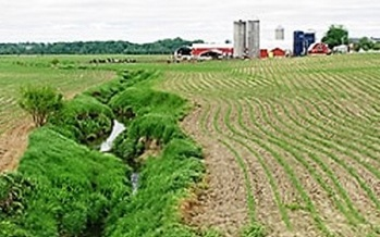 Agricultural runoff flows into the lakes and rivers from which hundreds of towns draw their water. (usgs.gov)