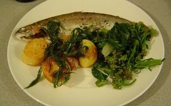 New advice from two federal agencies says fresh fish is safe and good for you. (Judy Atweiler)