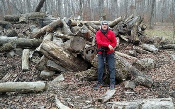 Hikers along the Knobstone Trail and others are finding areas that have been logged and clear cut. (Indiana Forest Alliance)