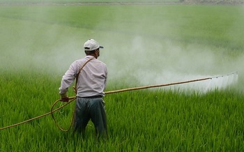 Three proposed mega-mergers would create companies that would control nearly 70 percent of the world's pesticide market, which has food and farm groups voicing concern. (Pixabay)