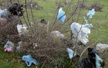 Litter is only one reason some communities ban retailers' use of plastic bags. They can also damage equipment at recycling facilities. (Metro Waste Authority)