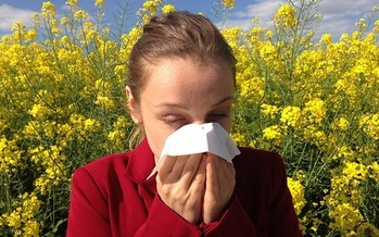 Washingtonians can prepare themselves for allergy season with over-the-counter nasal sprays and antihistamines. (cenczi/Pixabay)