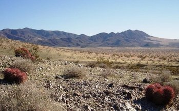 Mojave Trails National Monument in Southern California is one of about 50 across the nation that would be