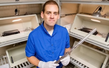 Epidemiologist Matt Allender came up with a test for sick snakes that's much quicker and less invasive. (University of Illinois)