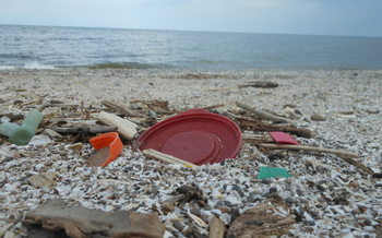 Most of the trash along the Great Lakes is the result of human activity, and the job is often left to volunteers to pick it up. (NOAA)