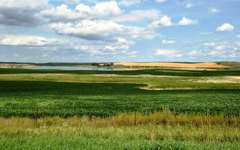 North Dakota is the largest producer of barley and many other cereal grains in the United States. (Krista Lundgren/USFWS)
