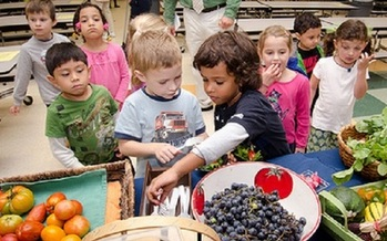 A new report says 38 Indiana counties have food insecurity rates among children at or above 20 percent. (USDA)