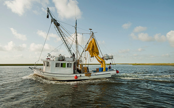 Gulf Coast fishermen are benefiting from conservation practices used by Wisconsin farmers. (Ken Cedeno/Getty Images)