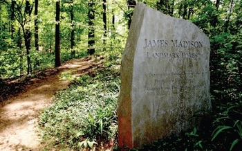The James Madison Landmark Forest is only about 200 acres in size, and contains some trees that are more than 200 years old. (American Forest Foundation)
